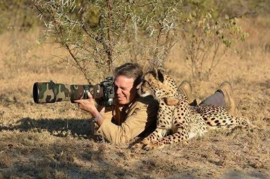 17 фото животных, сделанных в самый нужный момент