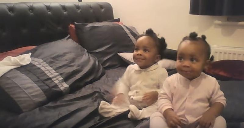 Эти малышки подарят вам кучу радостных эмоций (видео)