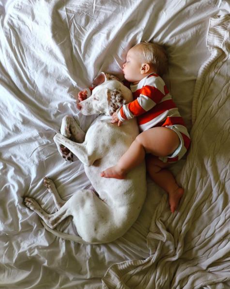 Эту собаку спасли от живодеров и она боялась всех, кроме него… Этот 11-месячный малыш возродил в ней веру в людей!