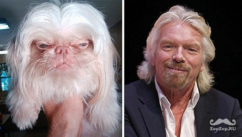 Британский предприниматель Ричард Бренсон и недовольный пес. Фото: ZopZop.ru