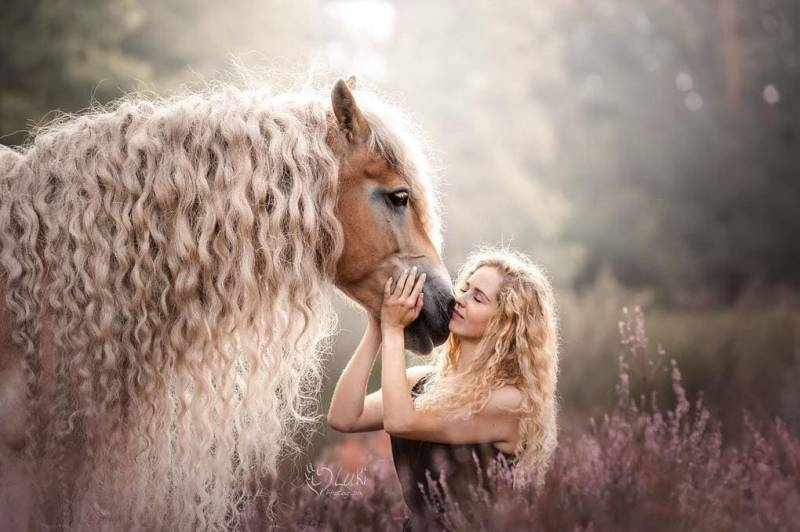 Жительница Голландии показала миру свою лошадь с поразительно длинной гривой, и она будто из сказки!
