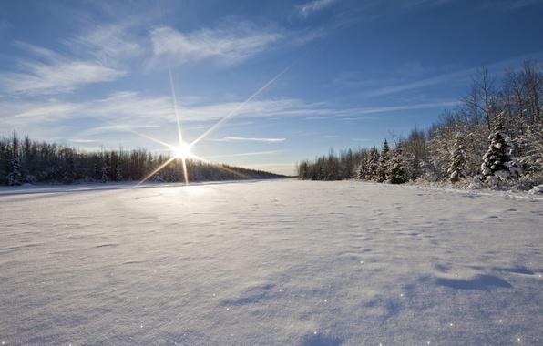Обои зима, небо, солнце, снег, деревья, река, лёд, берега картинки ...