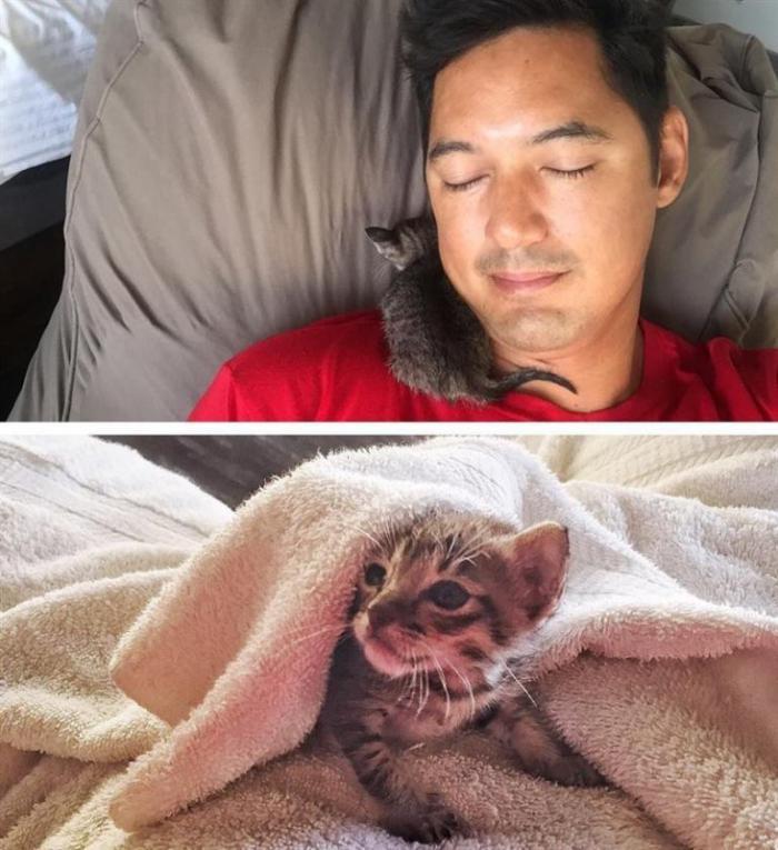 После того, как мужчина спас маленького котенка, их жизни полностью поменялись
